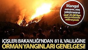 İçişleri Bakanlığı'ndan 81 il valiliğine orman yangınları konulu genelge