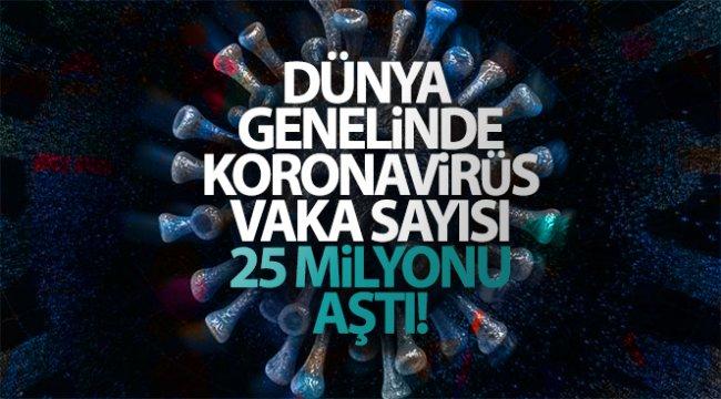 Dünya genelinde korona virüs vaka sayısı 25 milyonu aştı