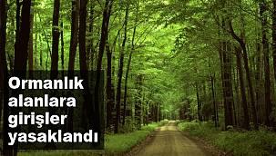 Afyonkarahisar'da ormanlık alanlara girişler yasaklandı